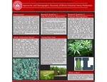 Agronomic and Demographic Discovery of Illinois Industrial Hemp Production